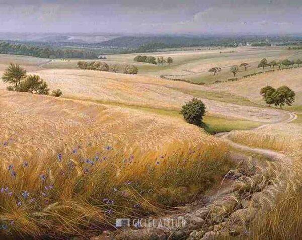 Korenvelden - Patrick Creyghton - gicleekunst
