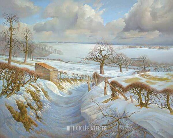 Uitzicht op Harles - Patrick Creyghton - gicleekunst
